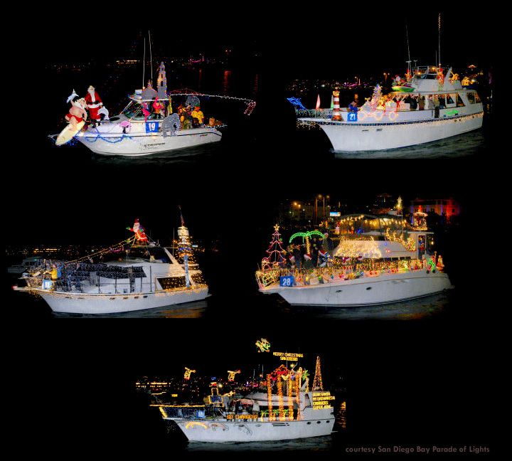 San Diego Bay Parade Of Lights Delectable Sit On The Embarcadero And Watch The Parade Of Lightsdozens Of Inspiration Design