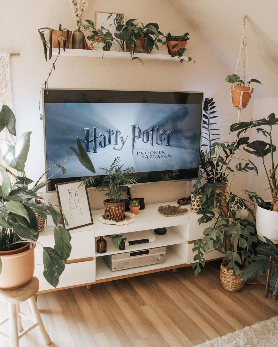 Plants L Interior L Diy On Instagram Zu Welchem Haus In Hogwarts Gehorst Du Werbung Unbeauftragt Harry Potter Room Decor Slytherin Decor Room Ideas Bedroom
