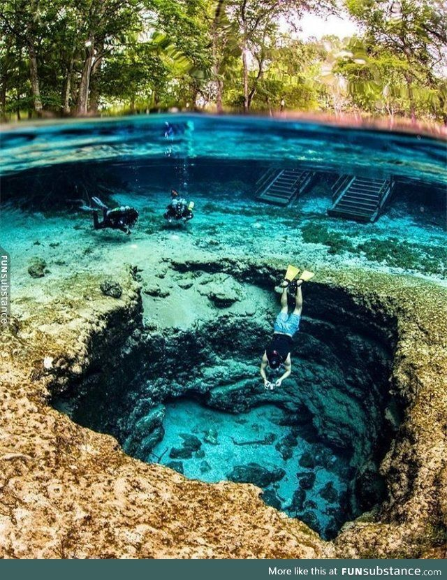 Ginnie Springs Is Known For Having Some Of The Clearest Water In The World Funsubstance Cool Places To Visit Places To Travel Florida Travel