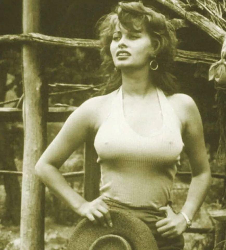 Sophia Sophia Loren Actresses Old Hollywood