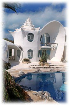 Shell House Isla Mujeres Mexicowe Stayed Right Next Door To This - Conch-shell-house