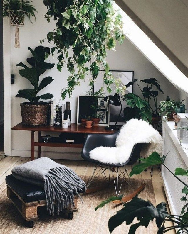 simple house plants indoor decor ideas homedecoration homedecorideas homedecor also home decoration rh pinterest