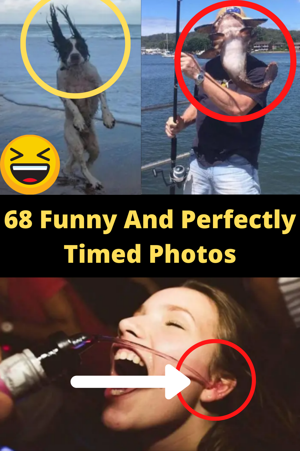 Amazing Things Funny