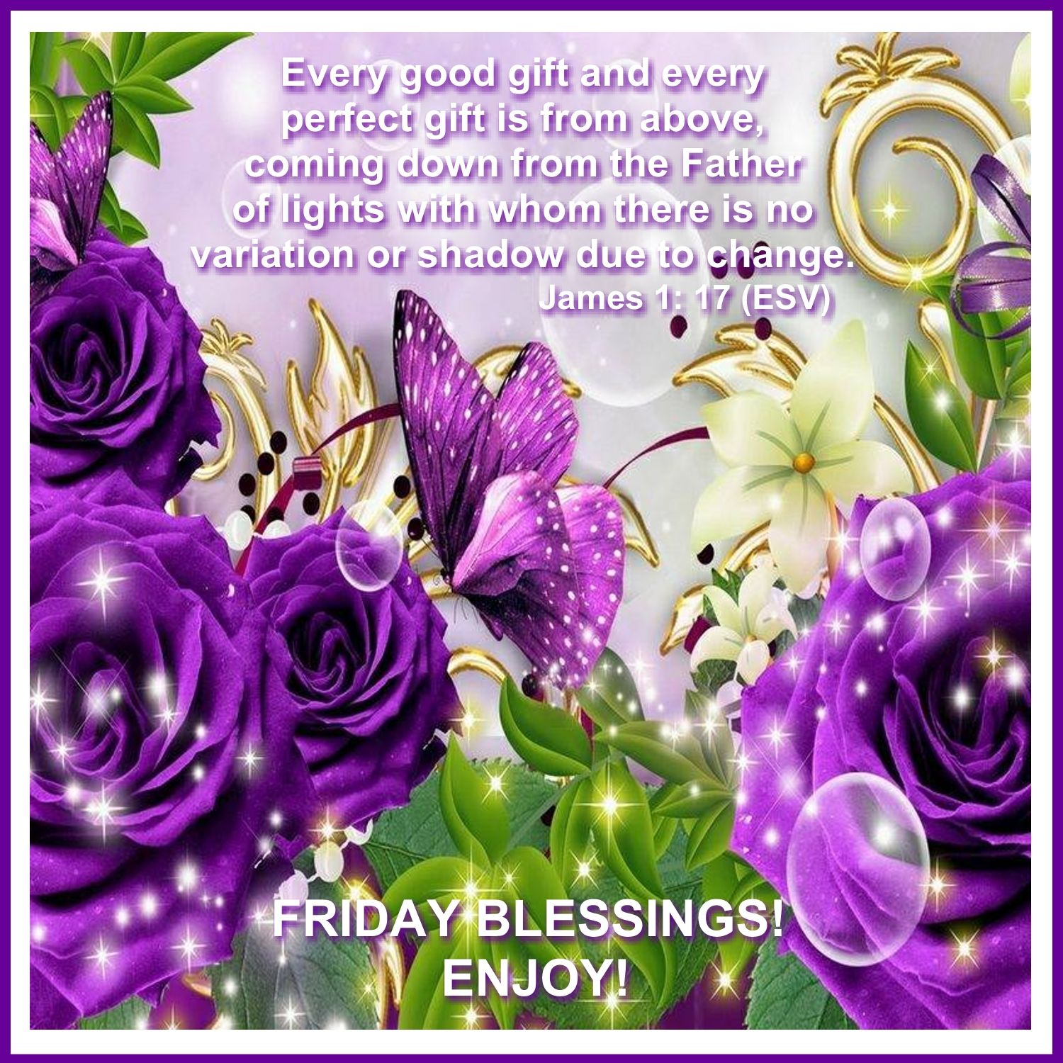 Pin by Rosa Well on FRIDAY BLESSINGS Purple roses