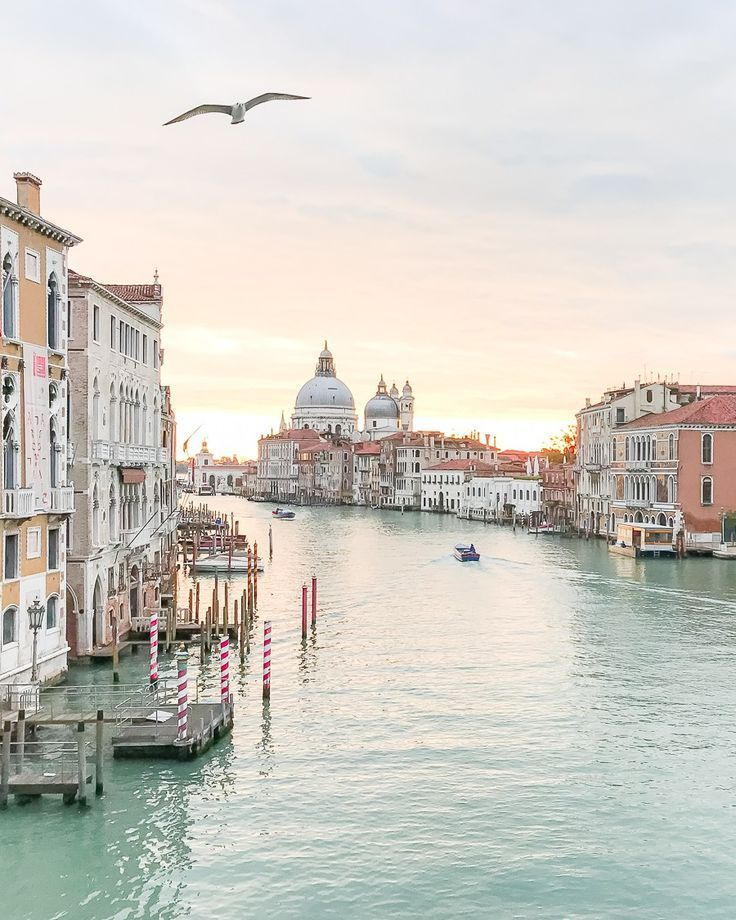 Sunrise overlooking the Grand Canal in Venice, Italy. #venice #italy
