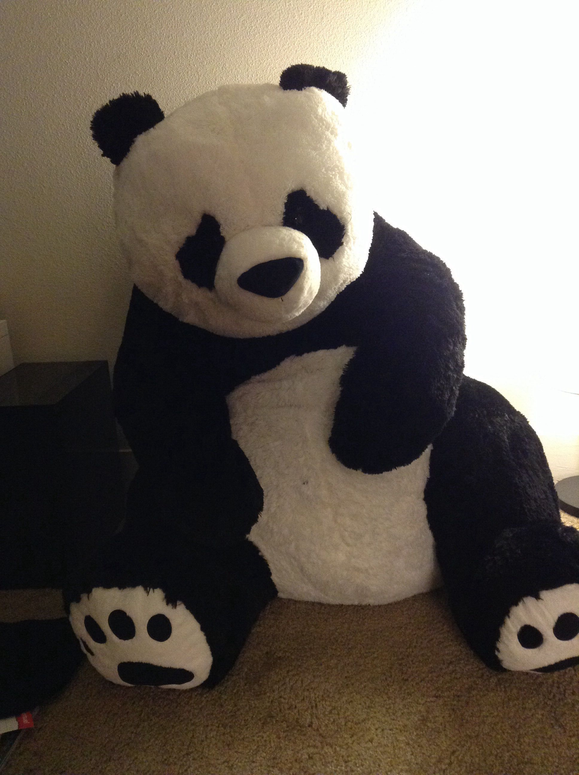36 Stuffed Panda From Costco Love It Pinterest Panda Panda