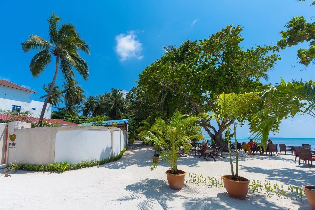 Дом на мальдивах regent beach resort 3 дубай джумейра