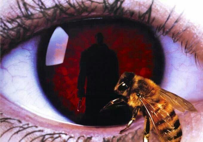 Candyman Eyes Cartazes De Filmes De Terror Lixeira Carro Filmes De Terror