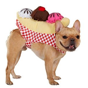 Cutest Thing Ever Top Paw Ice Cream Sundae Costume Costumes