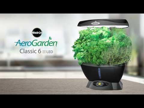 Garden Year Round With The Aerogarden Grow Fresh Herbs 400 x 300