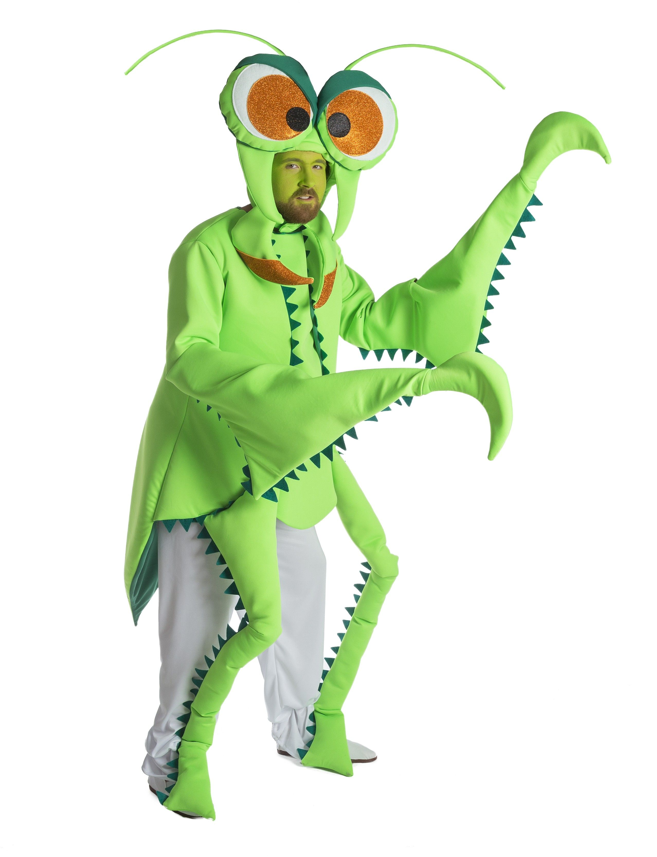 Disfraz insecto Disfraces de animales, Disfraces