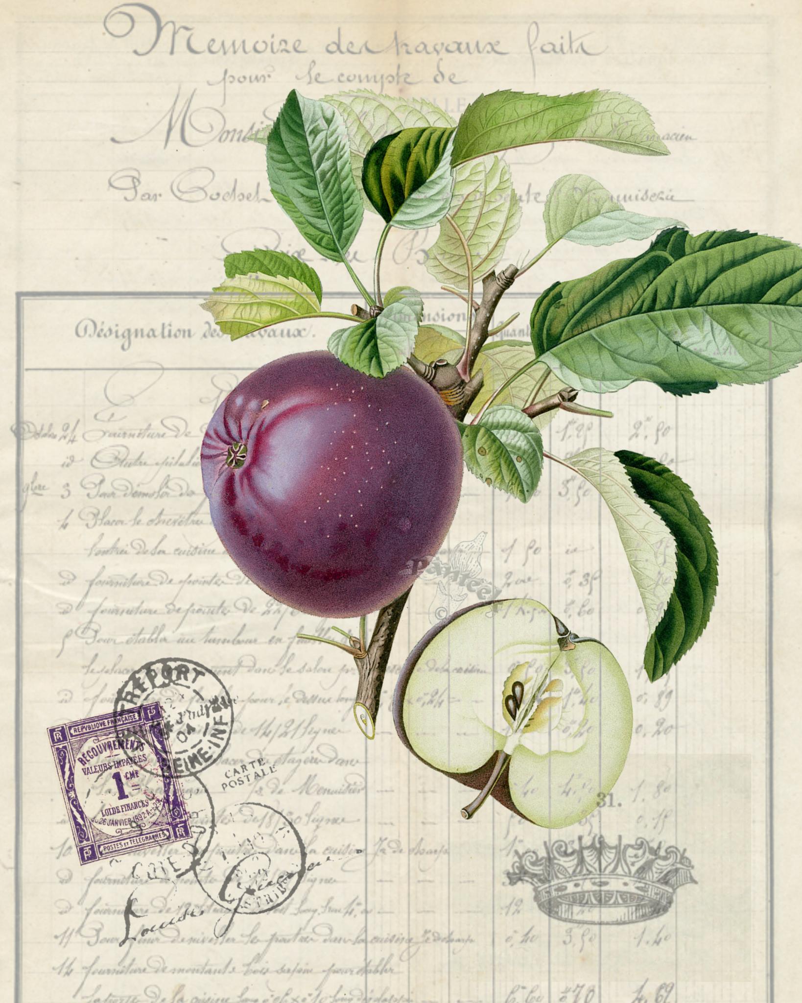 Of Favorites Bellavintagehome Botanical