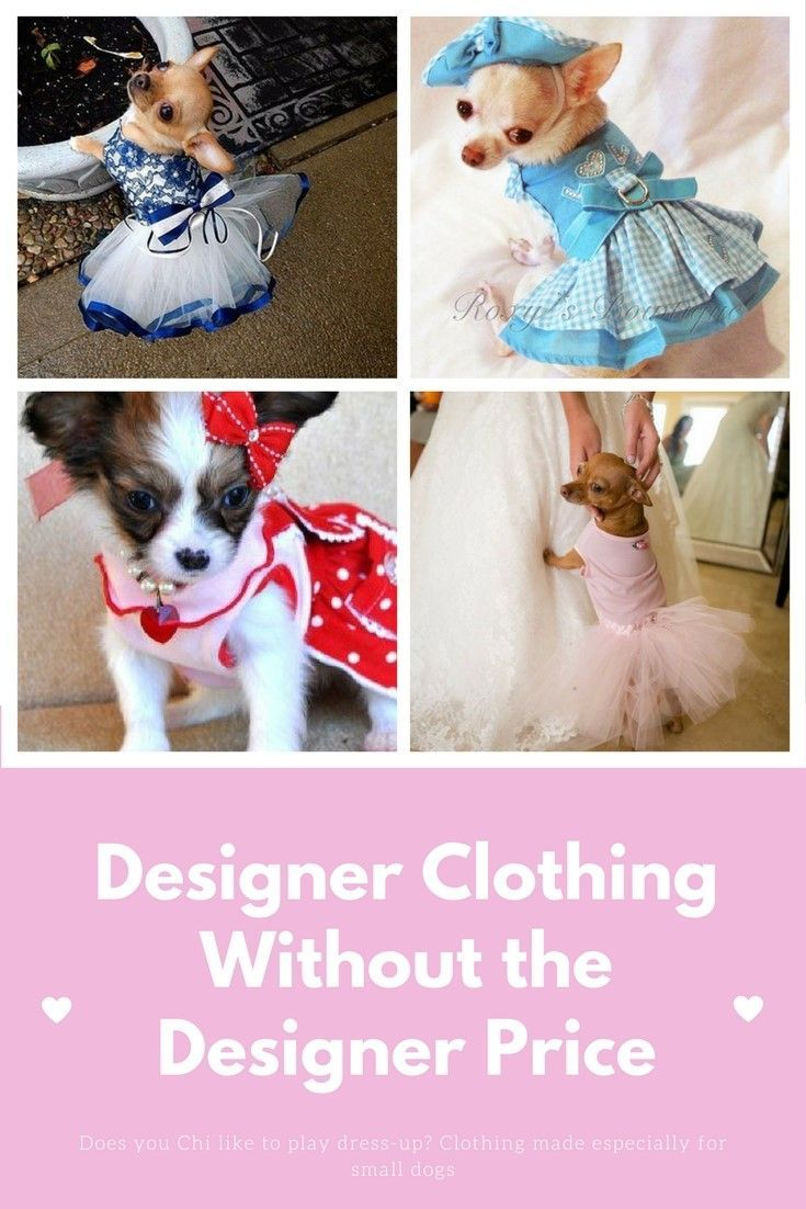 Cute chihuahua and small dog outfits does your dog like to play