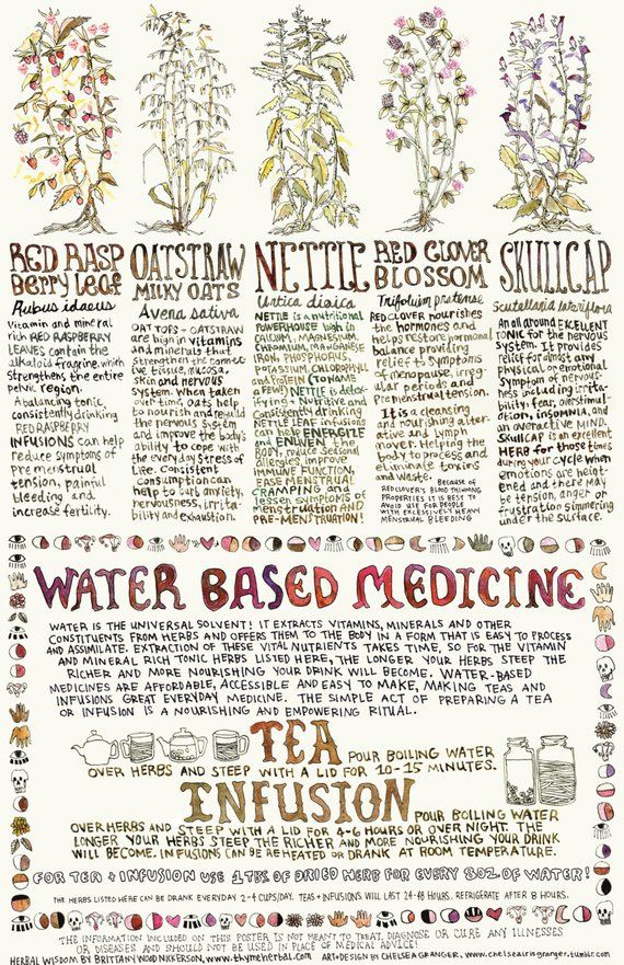 Old version of Menstrual Herbs poster