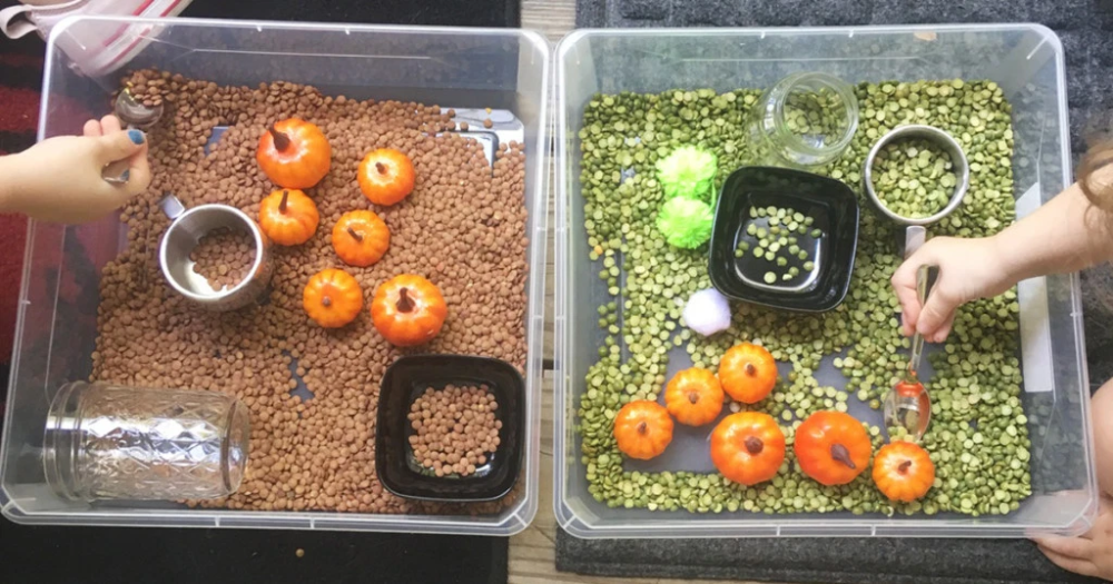 How to Make Frugal Fall-Inspired Sensory Bins at Home – Perfect for Toddlers!