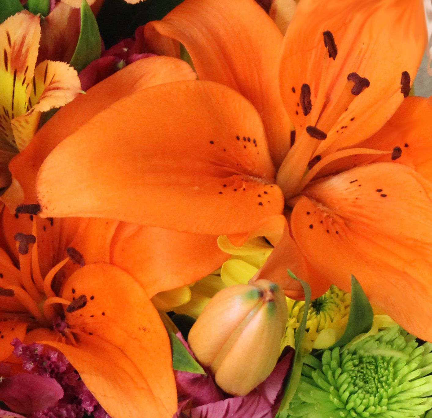 Flower meanings the story and meaning behind the lily next time flower meanings the story and meaning behind the lily next time you give a bouquet with a lily make it extra special by knowing what color is perfect for izmirmasajfo
