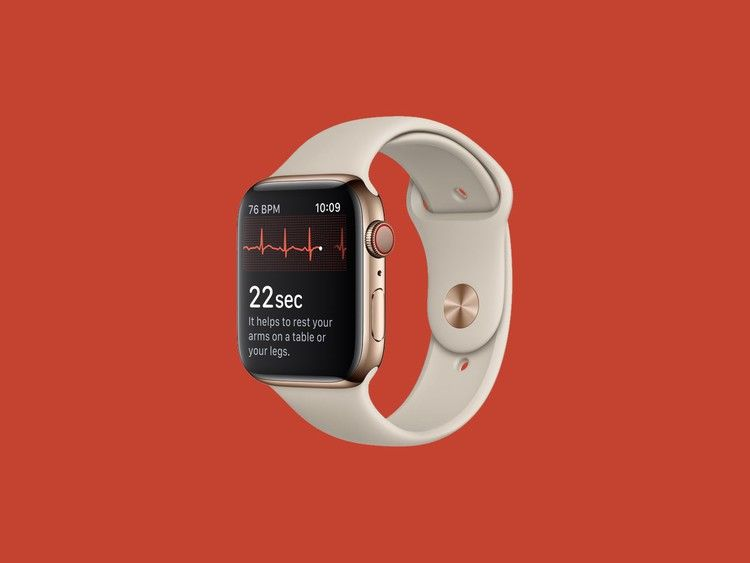 A Guide to Using Apple Watch's Heart Rate Features