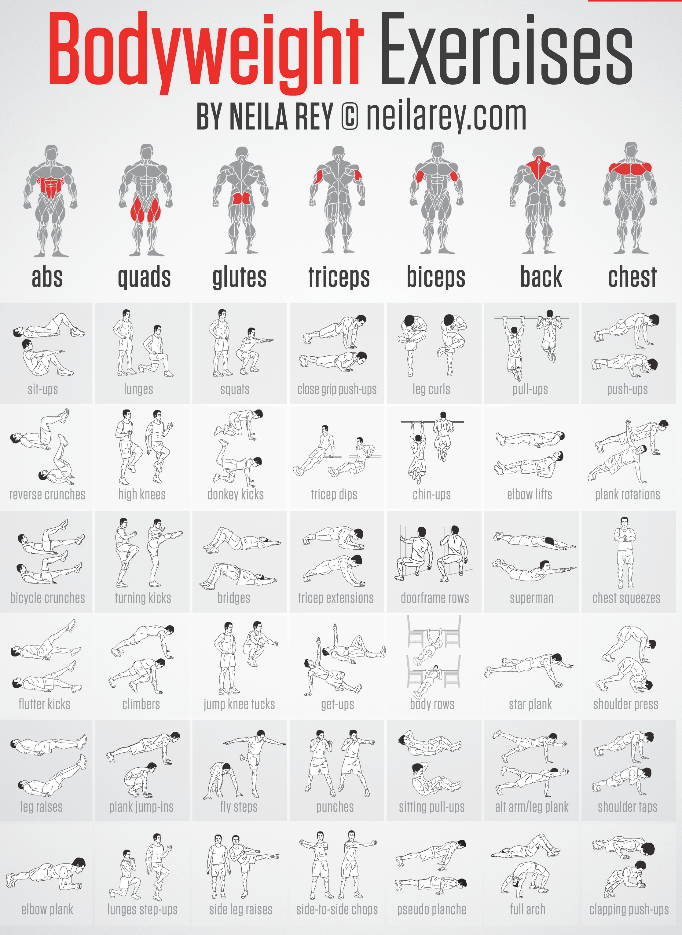 Gym Workout Chart For Chest For Men Pin By Zachariah Wallace On Fitness Pinterest Gym