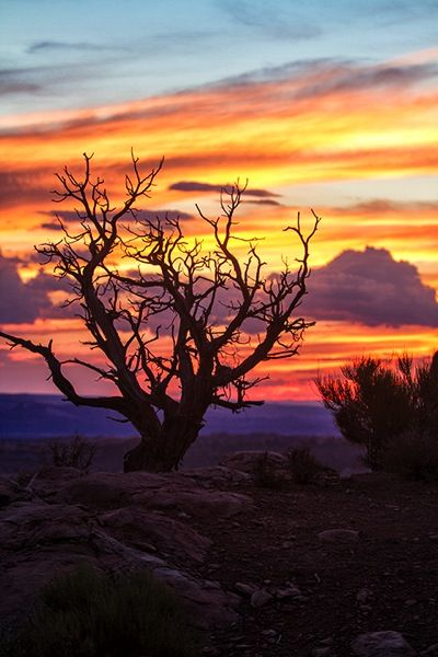 5 Tips For Better Landscape Photos Cool Landscapes Landscape Photography Landscape Photos