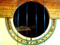 Aprende como tocar el Cuatro Venezolano con TuCuatro