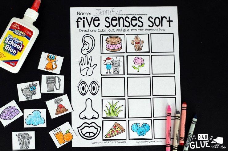 five senses school senses preschool science lessons five senses preschool. Black Bedroom Furniture Sets. Home Design Ideas