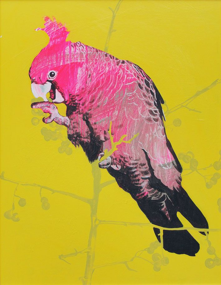 Geoffrey Carran\'s amazing bird paintings are available as limited ...