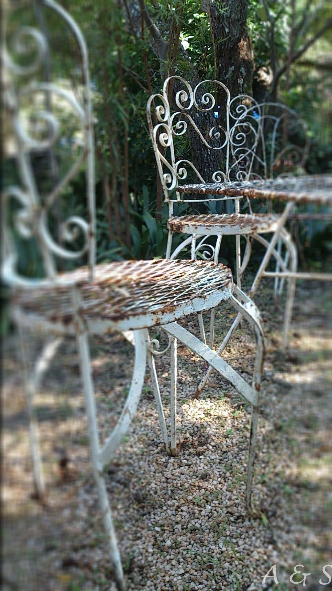 A Quiet Corner In The Garden To Have A Cup Of Tea Old French Metal Garden Chairs Add Some Magic
