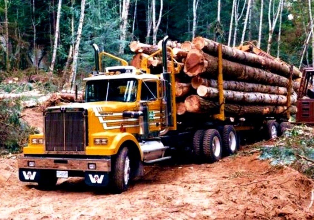 Western Star Log Truck Canada White Truck Trucks Motor Truck