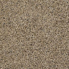 Color 511 Sandalwood Style 4560 Unbelievable Georgia Carpet Industries Carpet Frieze Carpet Engineered Flooring