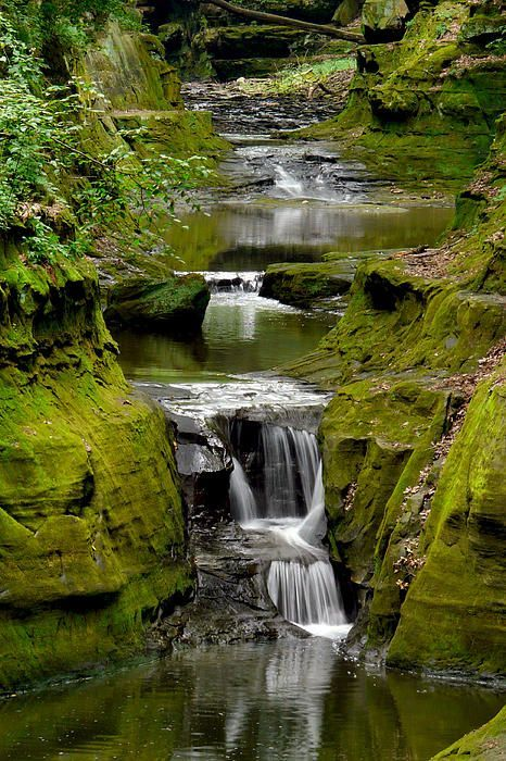 This is in a neighborhood just about 5 miles out of Baraboo Wisconsin, USA. Skiller Creek with seveal small waterfalls cuts through gorge near Devils Lake Wisconsin's Oldest and most popular state Park.