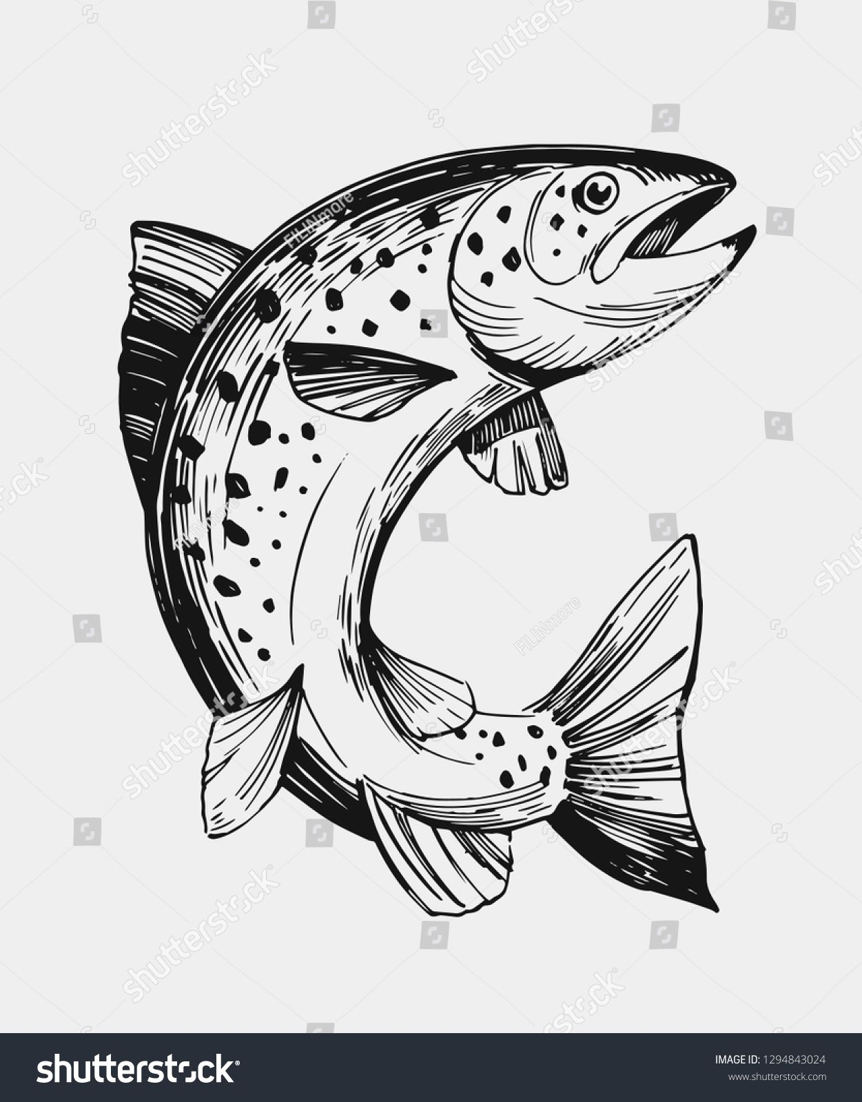 Sketch Fish Salmon Trout Hand Drawn Stock Vector Royalty Free 1294843024 In 2020 Fish Sketch Salmon Drawing How To Draw Hands