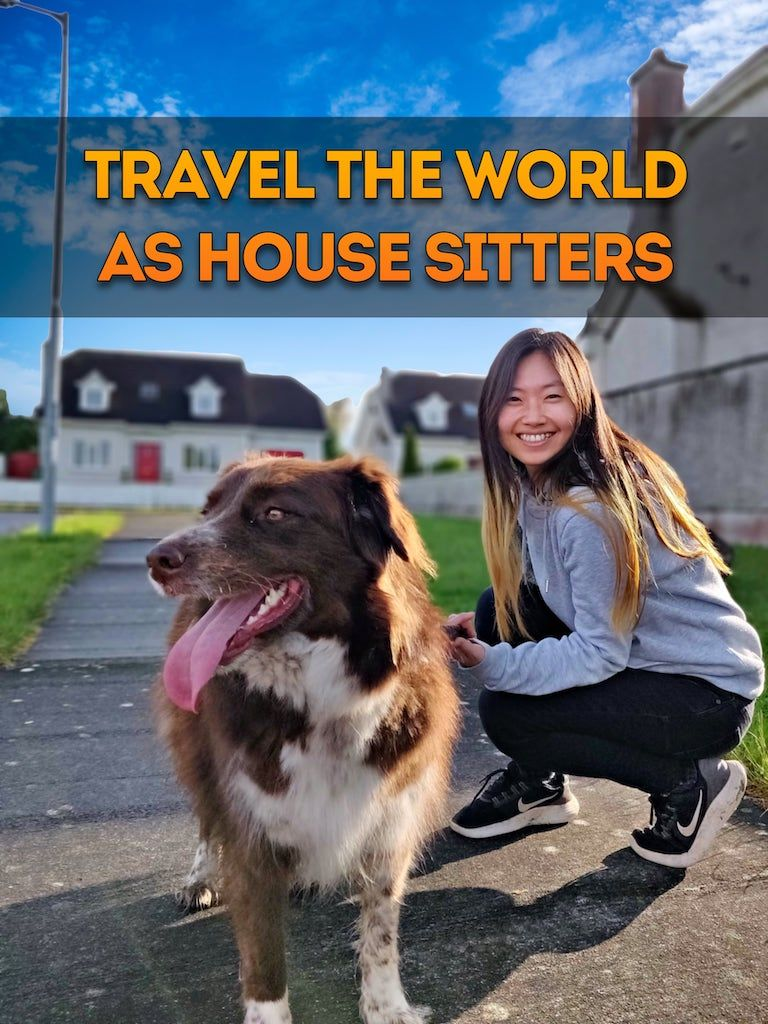 Save money on House sitting with