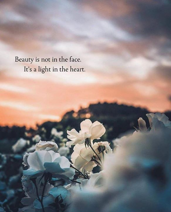 Inspirational Positive Quotes :Beauty is not in the face..
