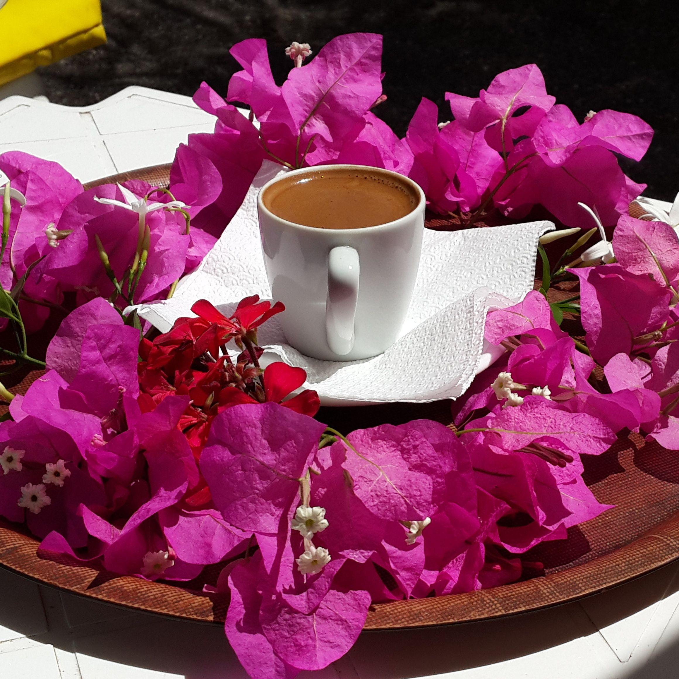 просто красивые фото с добрым утром софия спицами
