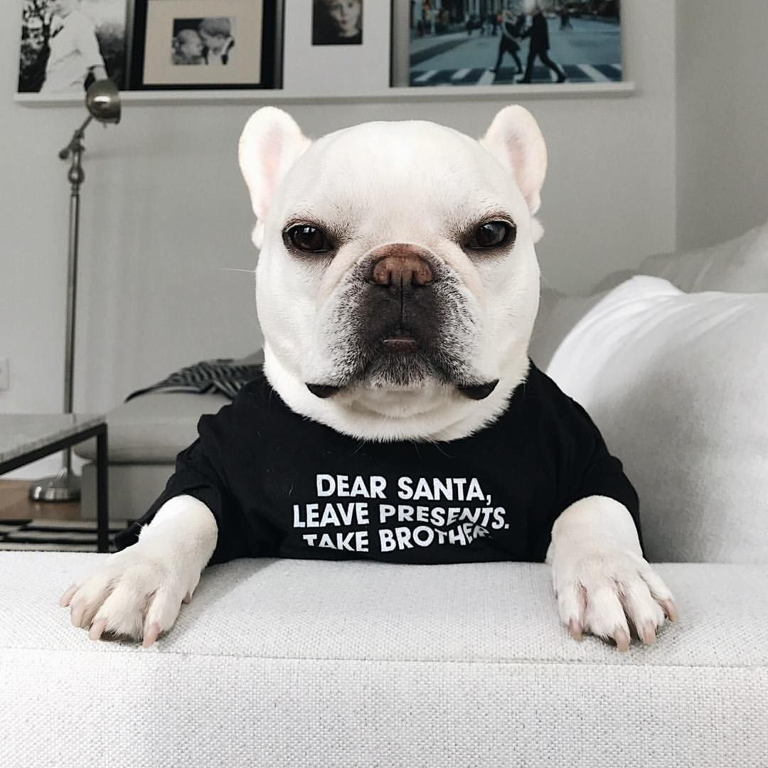 Dear Santa Leave Presents Take Brother Theo The Naughty
