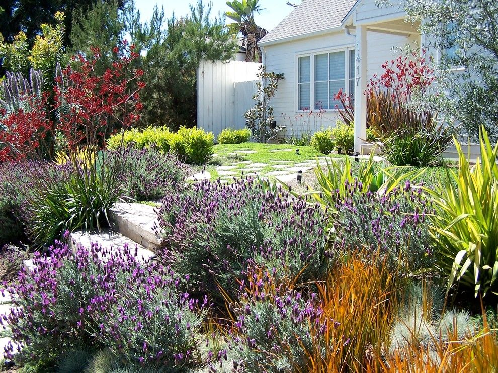 Gorgeous Low Maintenance Landscaping Mode Los Angeles Traditional