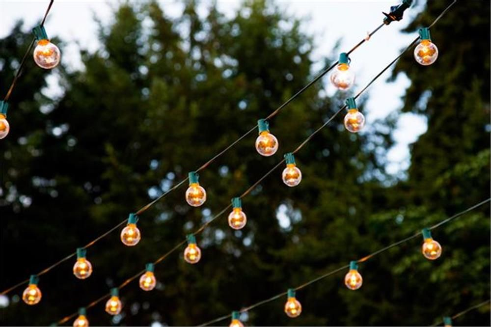 Globe String Lights - 30 ft Green 15-Socket with 24 inch spacing