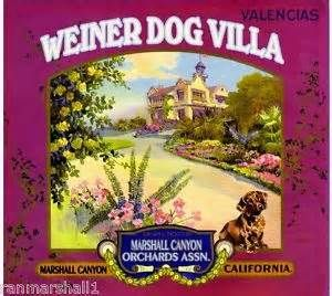 Weiner Dog Villa - Marshall Canyon, California