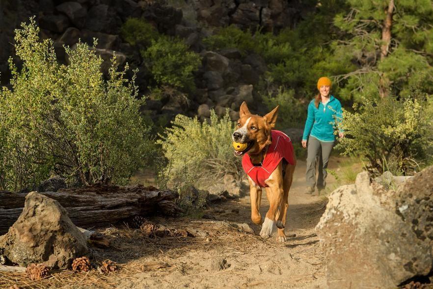 Interactive Dog Toys Exercise Dog Toys | Ultra Durable Interactive Dog Toys | Ruffwear