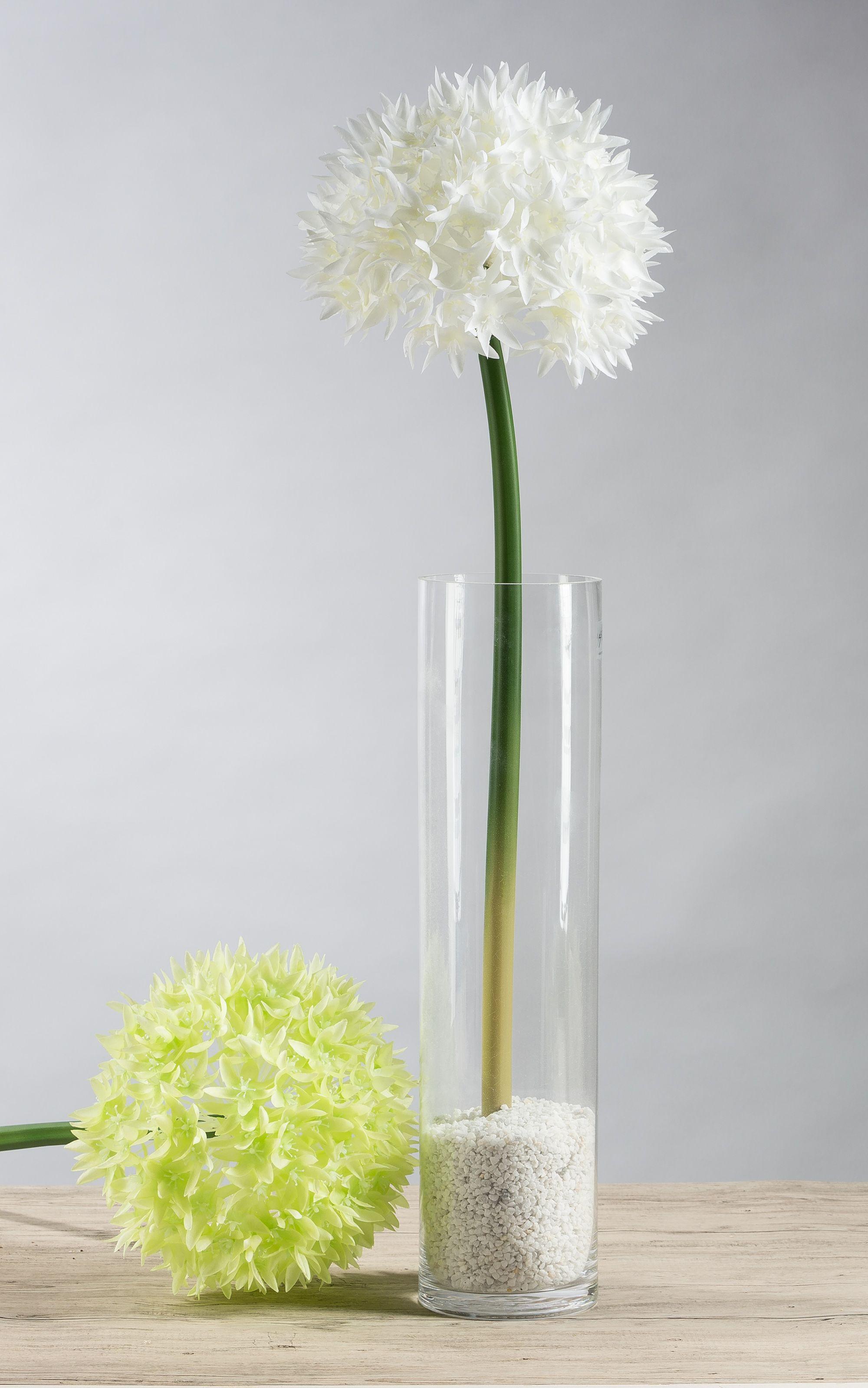 Flower vase pronunciation - Deko In Schlanker Vase Kunst Allium In Deko Granulat
