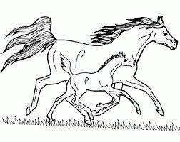 Imagini Pentru Desene Cu Cai Horse Coloring Horse Coloring Pages Detailed Coloring Pages