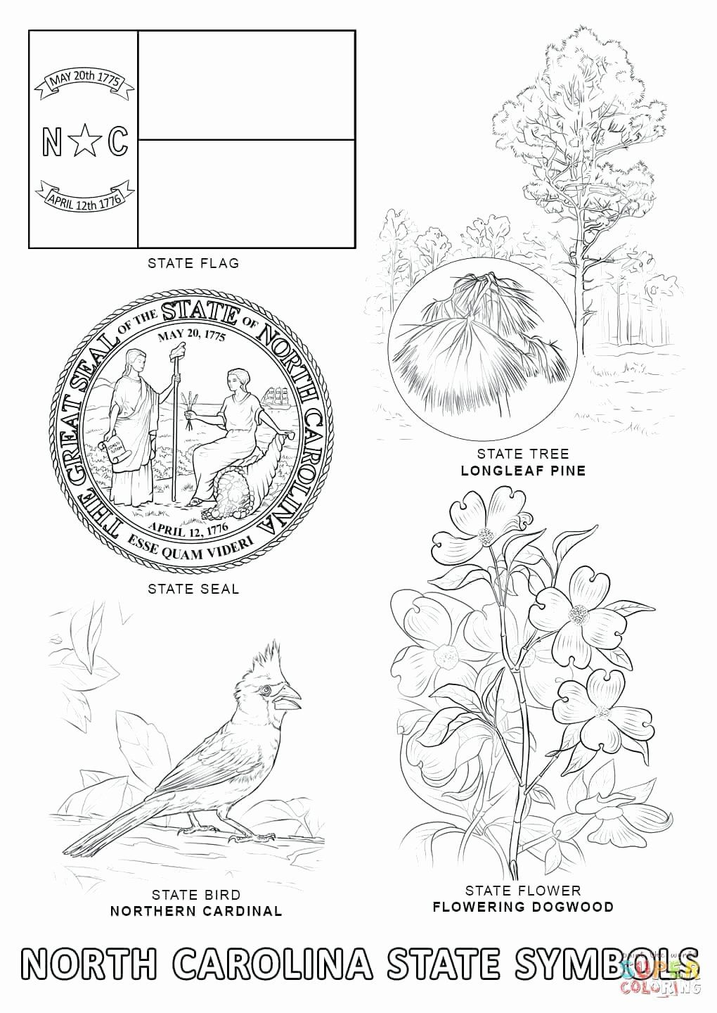 California State Bird Coloring Page Di 2020