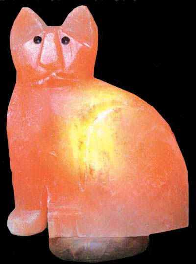 Salt Lamps And Cats Beauteous Salt Lamps  Animals Salt Lamps  Animal Spirituality & Healing Inspiration
