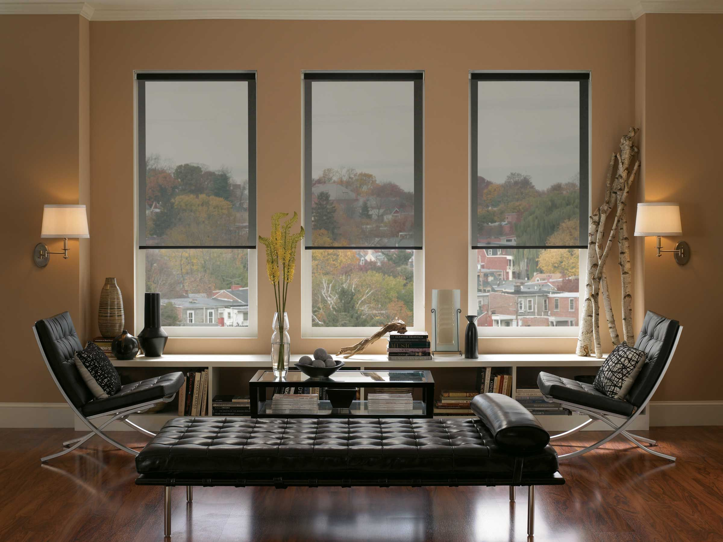 Black roller window blinds for modern living room with hardwood