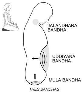 """Types of """"Bandhas"""" Bandha (बन्ध) is a Sanskrit term for """"binding, bond, arrest, capturing, putting together"""""""