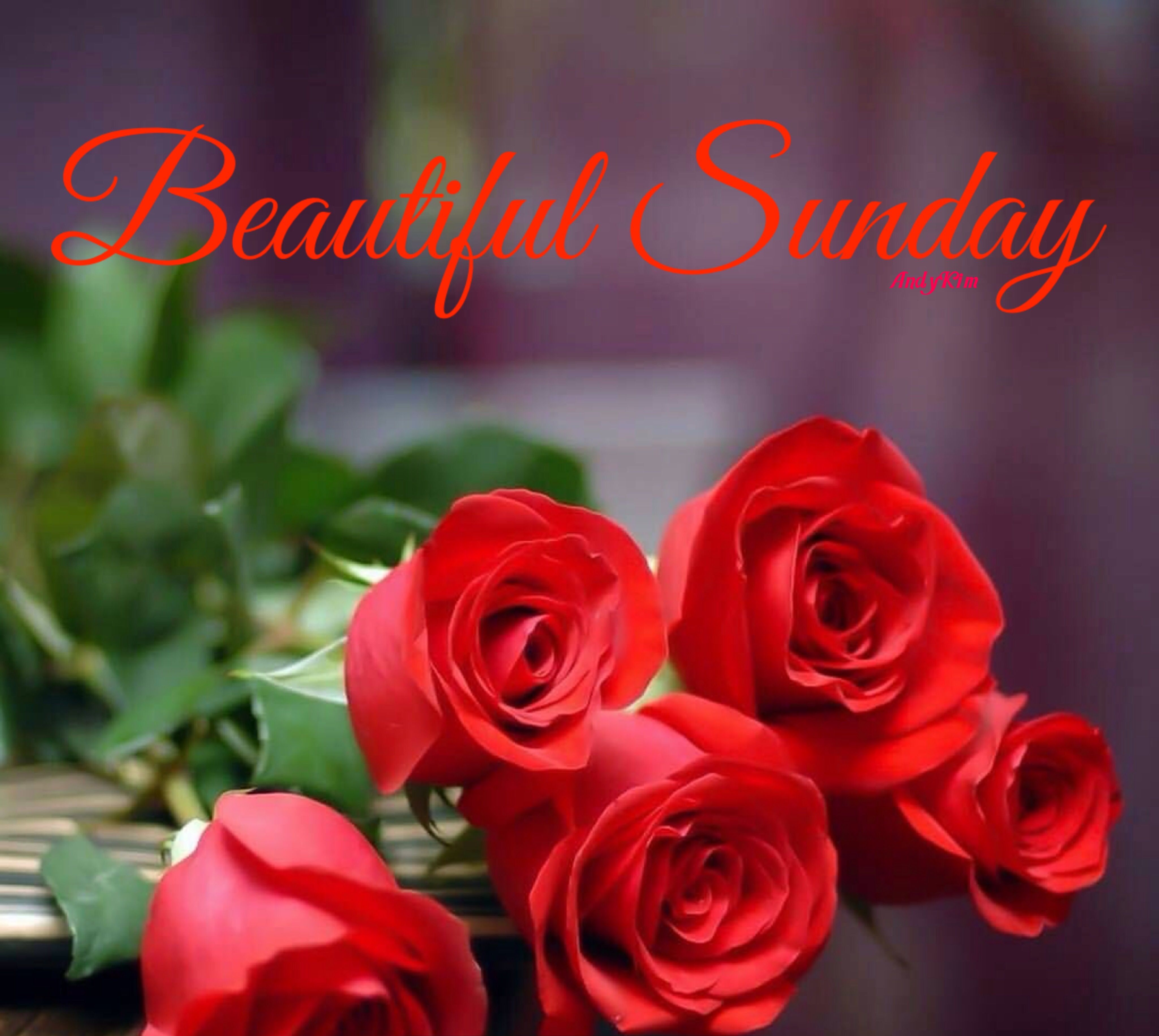 Good Morning วันอาทิตย์, สติกเกอร์, ดอกไม้
