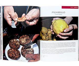 Nuevos libros de gastronomía » Tendencias » Revista Paula
