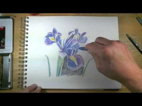 How To Draw With Watercolor Pencils Live Lesson Excerpts
