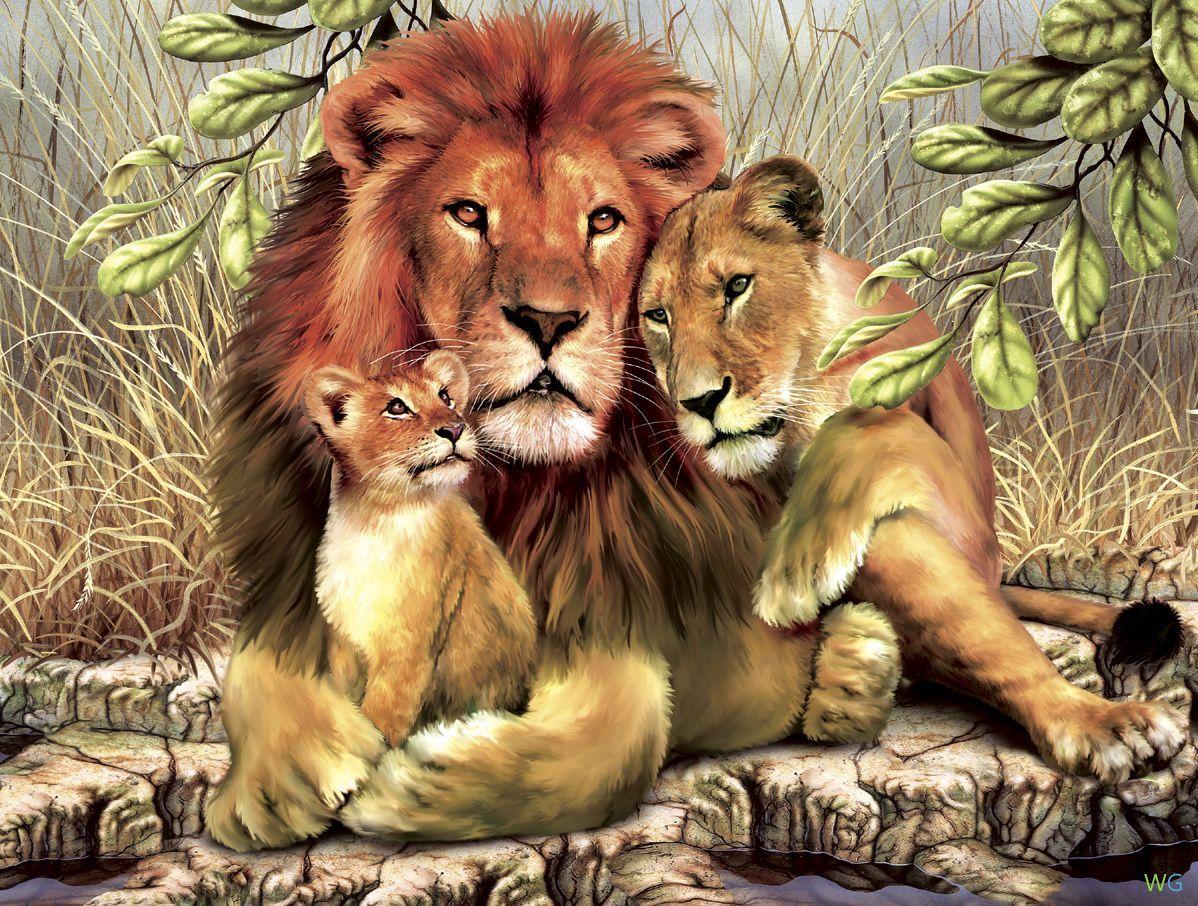 дикие животные фото - Поиск в Google