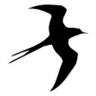 Es Gaviota Volando Silueta En Seagull Flying Silhouette Gaviotas Volando Silueta De Aves Arte Del Mar